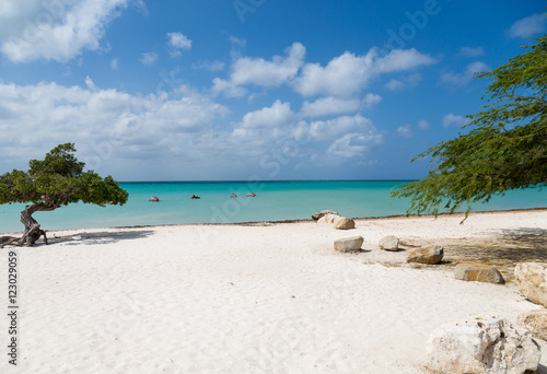 Sandy Aruba Beach Poster