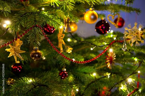 Weihnachtsbaum Fototapeta