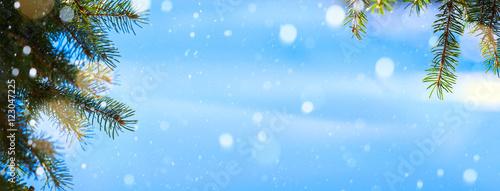Fototapeta art Christmas tree background; Blue winter Christmas Landscape obraz na płótnie