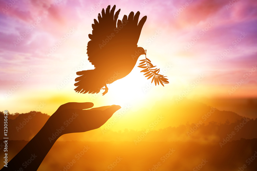 Silhouette of one hand desire to Dove carrying olive leaf branch