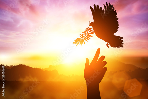 Foto En Lienzo - Silhouette of one hand desire to Dove carrying olive leaf branch