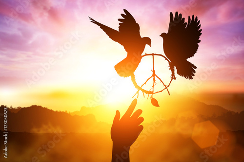 Foto En Lienzo - Silhouette of one hand desire to peace sign shape