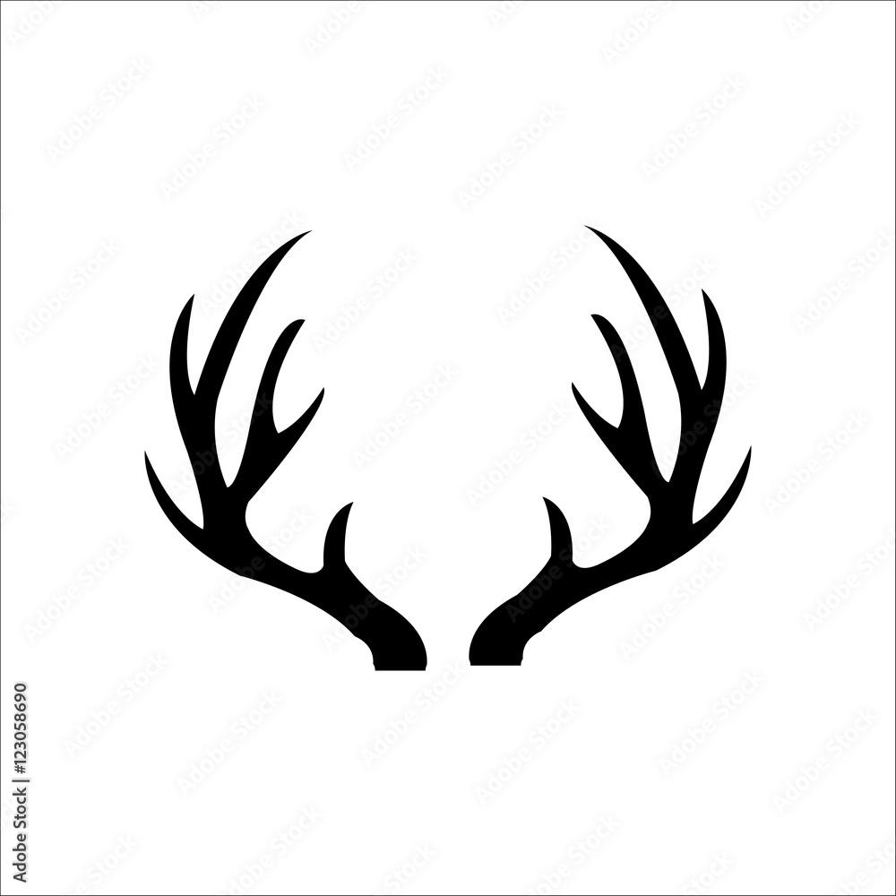 Fototapeta deer horn