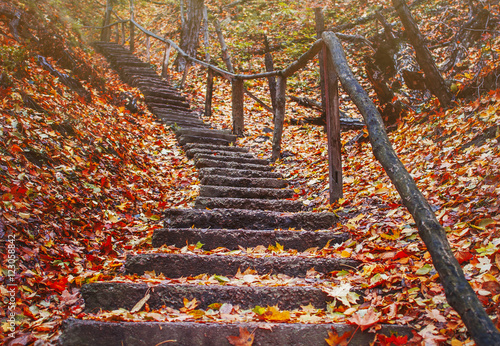 old staircase in the autumn forest in the mountains
