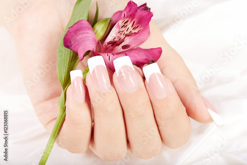 Hand with long artificial french manicured nails and lily flower Poster