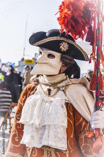 In de dag Boerderij Venetian carnival mask