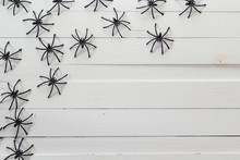 Many Black Spiders On The Whit...