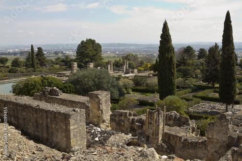 Foto op Aluminium Rudnes Ruins of Medina Az Zahara, Cordoba
