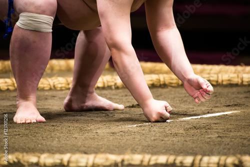 相撲の立ち合い