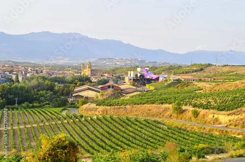 la rioja field landscape and marques del riscal winery