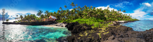Foto op Plexiglas Koraalriffen Coral reef and palm trees on south side of Upolu, Samoa Islands
