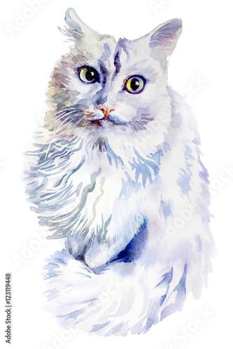 Photo sur Toile Croquis dessinés à la main des animaux animal collection: Cat. Watercolor illustration