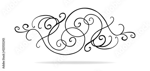 Fotografija vector of curls and swirls in symmetrical pattern, wedding design or Victorian a