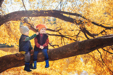 Little Boy And Girl Sitting On A Branch Of Tree In Autumn Forest