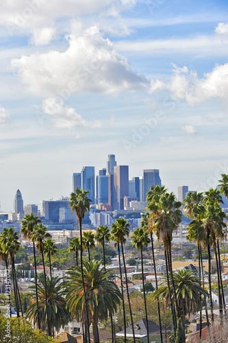 Photo  Los Angeles skyline with palm trees in the foreground