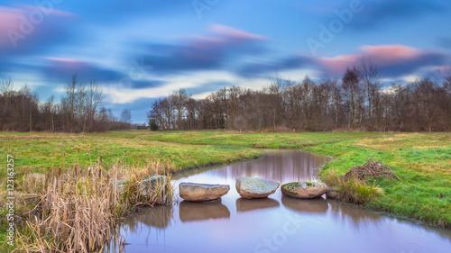 Fotografie, Obraz  Stepping stones in river
