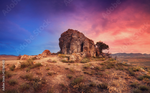 Foto op Plexiglas Diepbruine Desert with lonely rock. Tree growing from the mountain in the desert against multicolored sky at sunset. Blue and red clouds. Panoramic. Colorful landscape with trail, tree, stone and grass. Nature