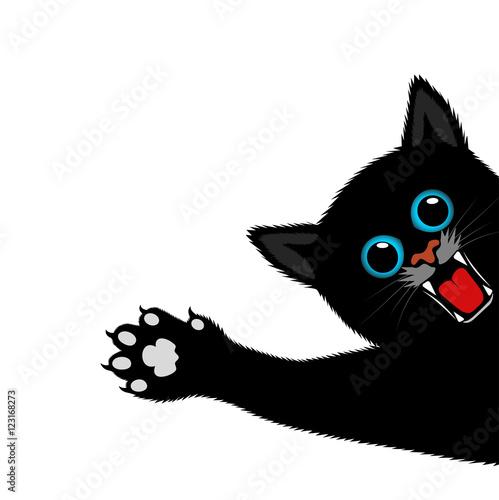 Fotografie, Obraz playful kitten on a white background