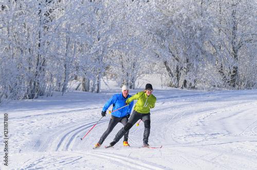 Poster Wintersporten Synchronität beim Langlaufen