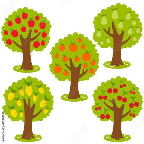 Fotografia Set of fruit orchard trees: Apple tree, Pear tree, orange tree, lemon tree and cherry tree