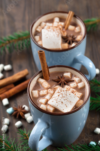 Foto op Plexiglas Chocolade Two Cups of hot Chocolate drink with Marshmallows and cinnamon on dark wooden background. Winter time. Holiday concept, Selective focus