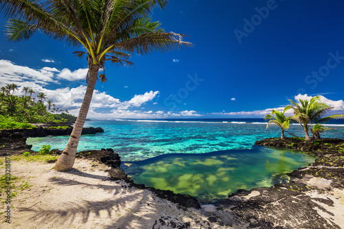 Poster Tropical plage Infinity rock pool with palm trees over tropical ocean lagoon