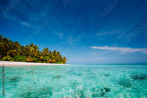 Poster Oceanië tropical beach against blue sky, vacation concept