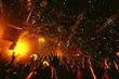 Leinwanddruck Bild - night club party festival dj with crowd of people