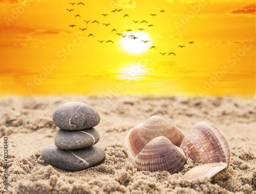 relaks-na-plazy-kamienie-i-muszle-na-piasku-zachod-slonca-pomaranczowe-niebo-i-mewy