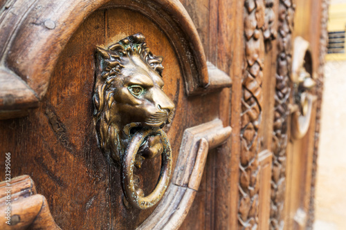A door knocker in Aix-en-Provence, France. Canvas Print