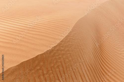 Poster de jardin Desert de sable Arabian desert