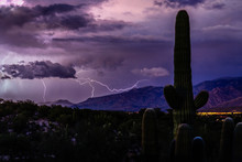Lightning Follows A Sunset Monsoon Storm In The Foothills Of The Santa Catalina Mountains, Tucson, Arizona.