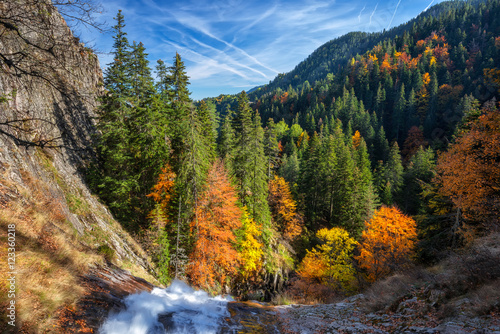 Recess Fitting Gray traffic Amazing view of an autumn forest in Rhodopi Mountains, Bulgaria