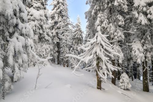 Papiers peints Alpes landscape