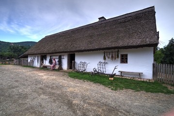 Fototapeta na wymiar Traditional Hungarian Village - Szentendre Folk Museum