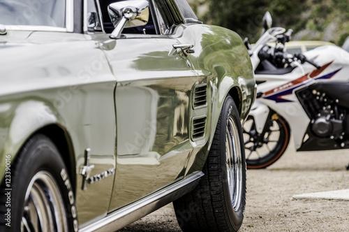 Fotografie, Obraz Mustang 1