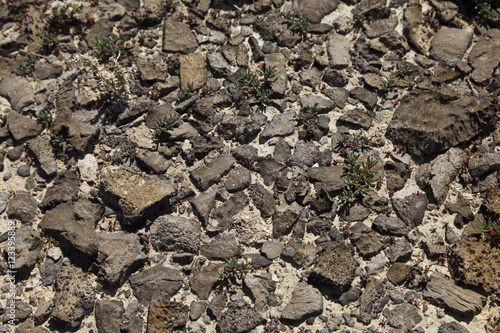 Weather worn Lava rock at the Thule Valley Hardpan (Ibex) Canvas-taulu