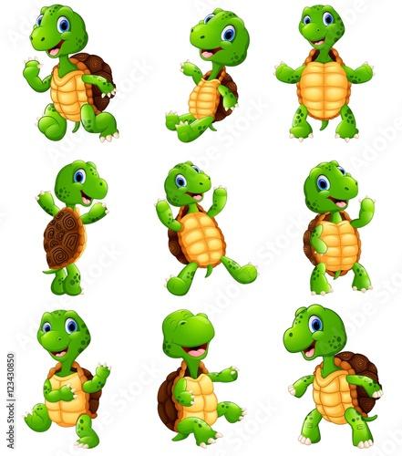 Fototapeta premium Zestaw kolekcja kreskówka szczęśliwy żółw