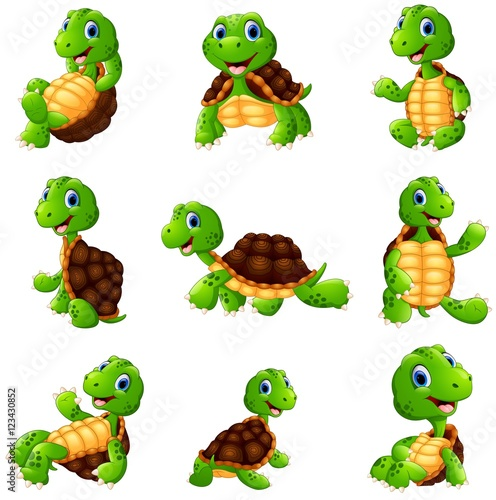 Fototapeta Happy turtle cartoon collection set