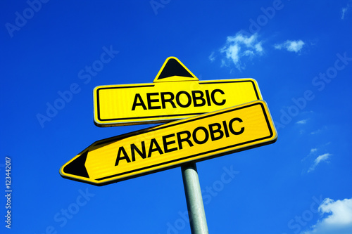 Aerobic or Anaerobic - Traffic sign with two options - physical exercise and wor Canvas Print