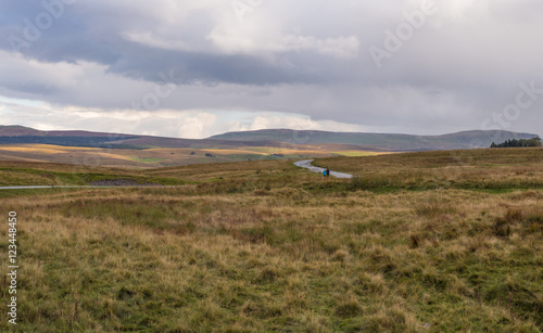 Early Autumn on moorland at Ribblehead, Settle, North Yorkshire, UK Canvas Print