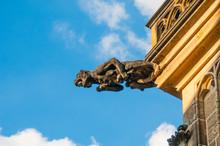 Gargoyle Of St. Vitus Cathedral In Prague, Czech Republic