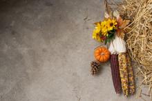 Indian Corn Autumn Background
