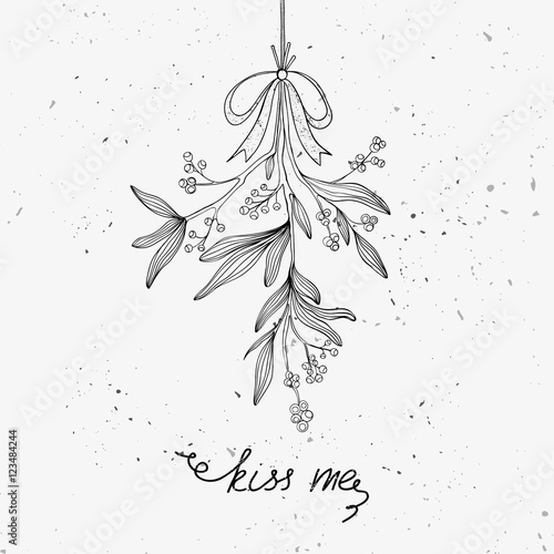 Fotografie, Obraz Hand drawn mistletoe