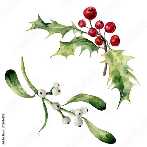 Fotografie, Obraz  Watercolor holly and mistletoe set