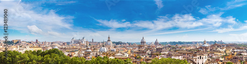 Garden Poster Rome Panoramic view of Rome
