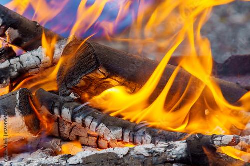 Recess Fitting Firewood texture Bonfire close-up view