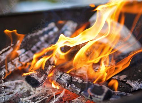 Recess Fitting Firewood texture Closeup of Flames of Fire Of Bonfire Ooutdoors