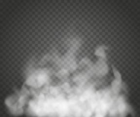 Mgła lub dym na białym tle przezroczysty efekt specjalny. Białe tło zachmurzenie, mgła lub smog. Ilustracji wektorowych