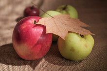 Close Up Group Of Apples On Burlap Textured Surface With Dry Brown Autumn Leaf On Top